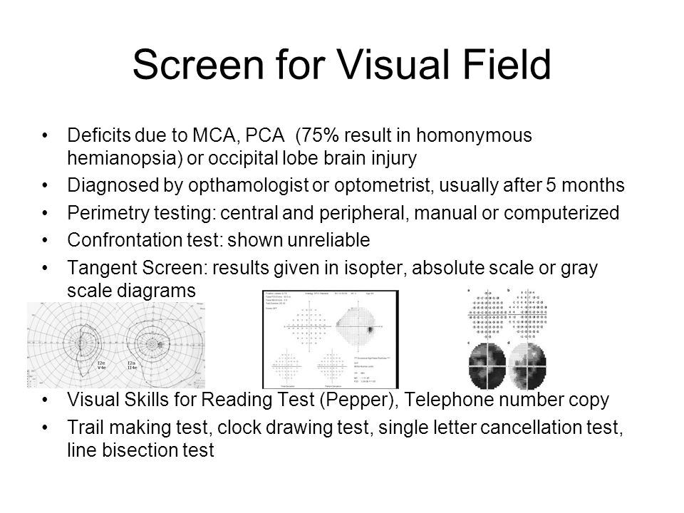 Screen for Visual Field