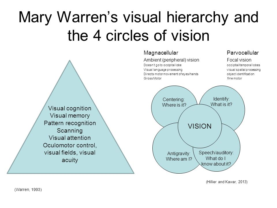 Mary Warren's visual hierarchy and the 4 circles of vision