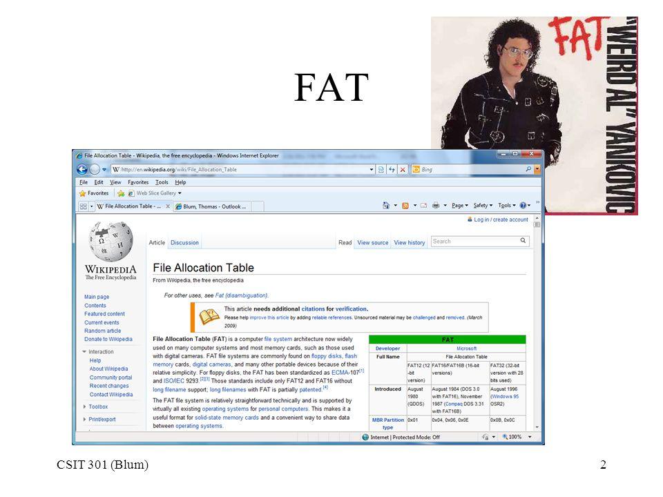 FAT CSIT 301 (Blum)