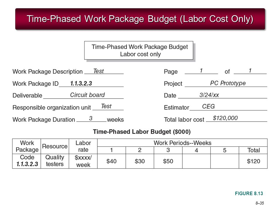 Time-Phased Work Package Budget (Labor Cost Only)