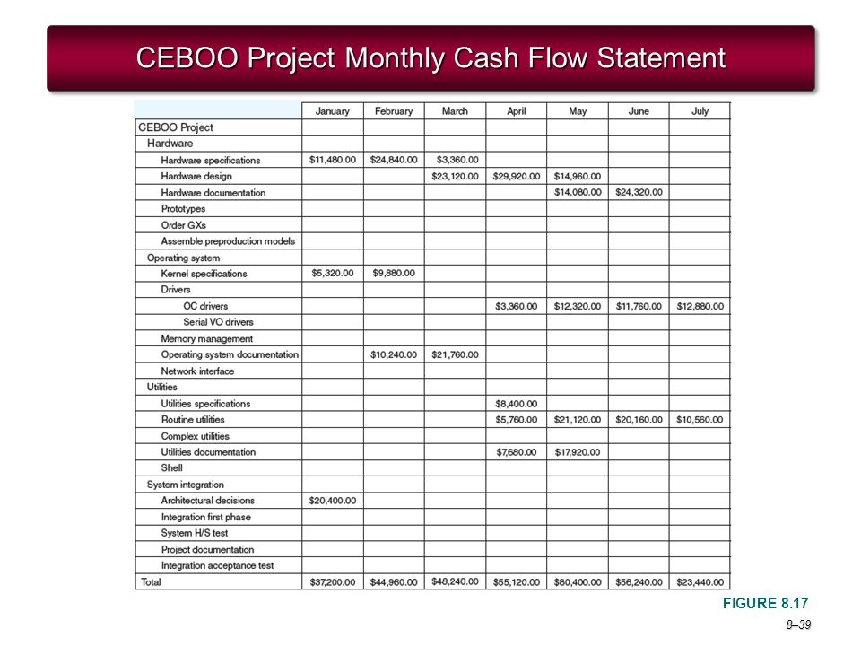 CEBOO Project Monthly Cash Flow Statement