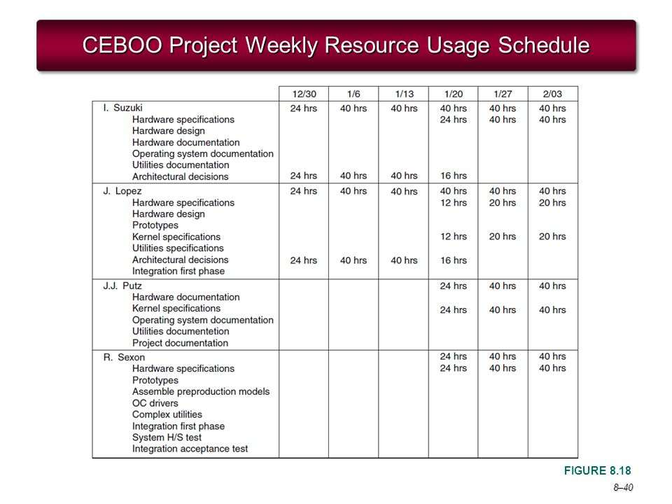 CEBOO Project Weekly Resource Usage Schedule