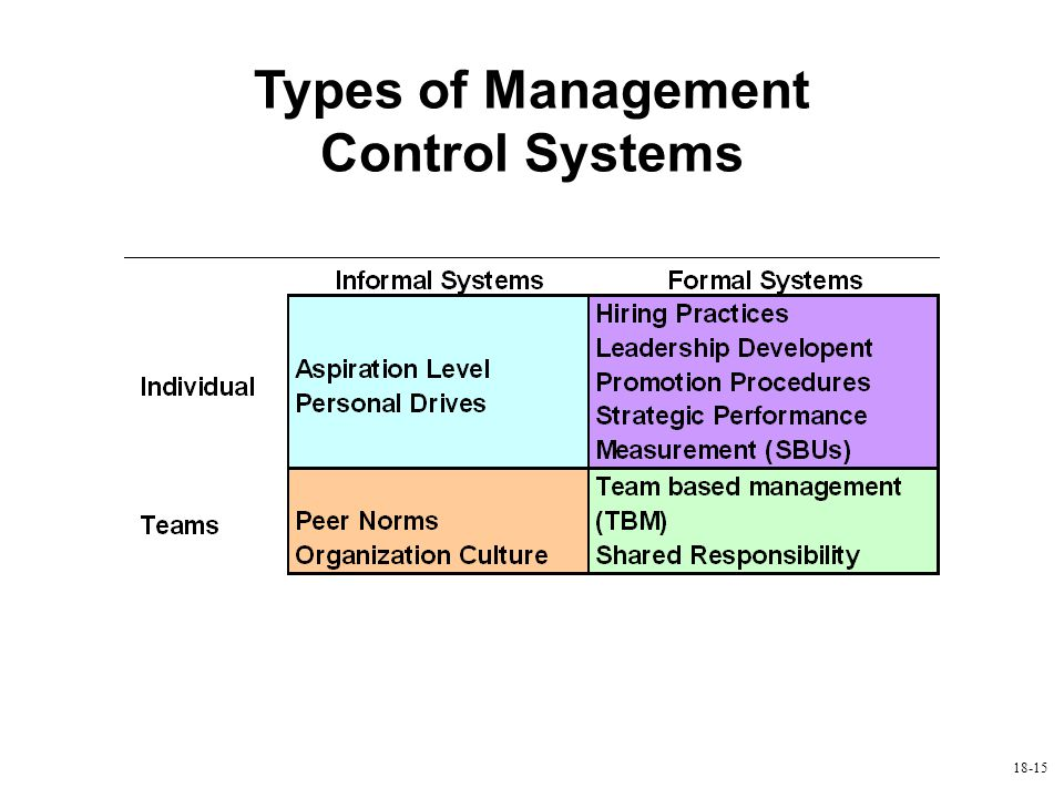 Types of Management Control Systems