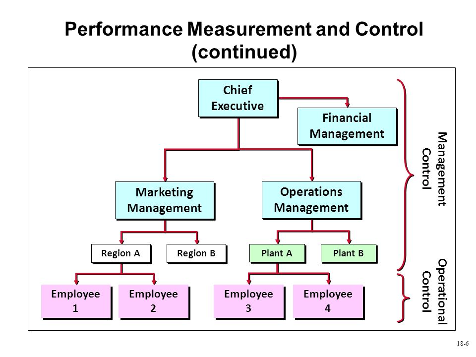 Performance Measurement and Control (continued)
