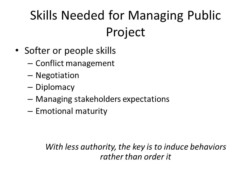 Skills Needed for Managing Public Project