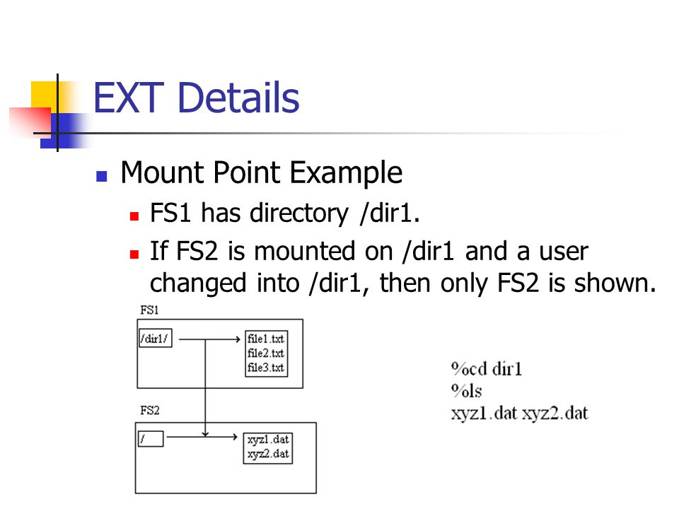 EXT Details Mount Point Example FS1 has directory /dir1.