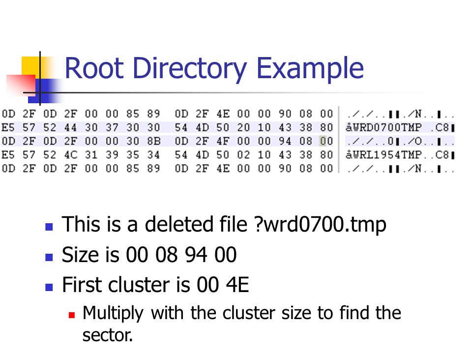 Root Directory Example