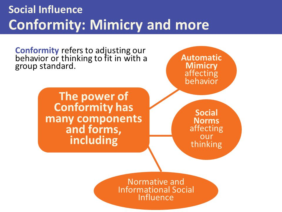 Social Influence Conformity: Mimicry and more