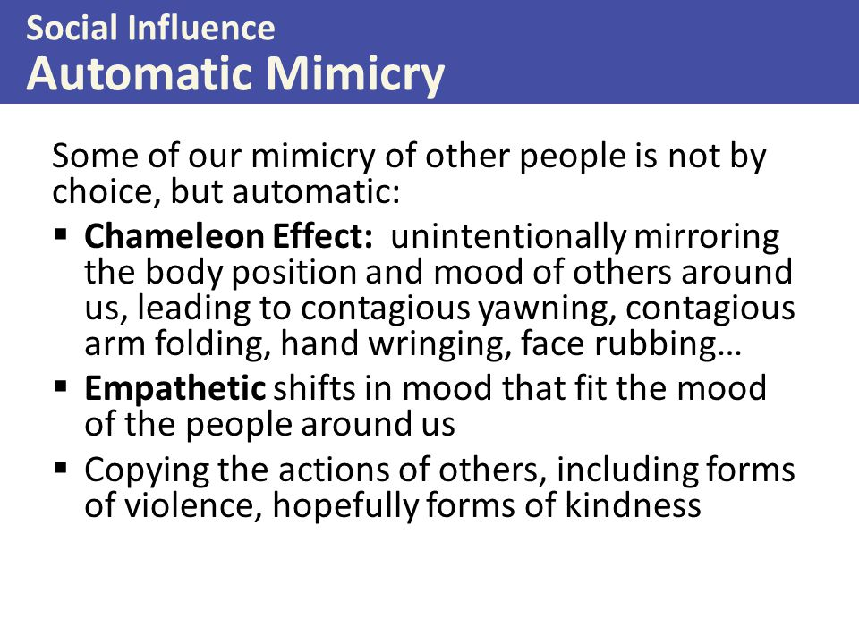 Social Influence Automatic Mimicry