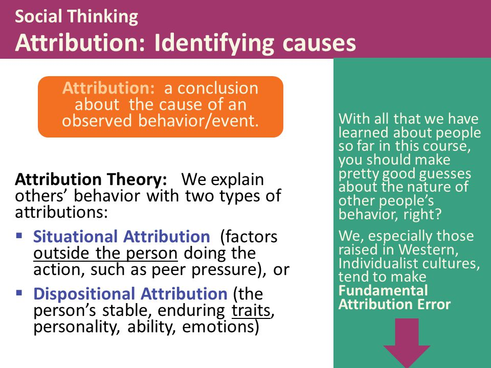 Social Thinking Attribution: Identifying causes