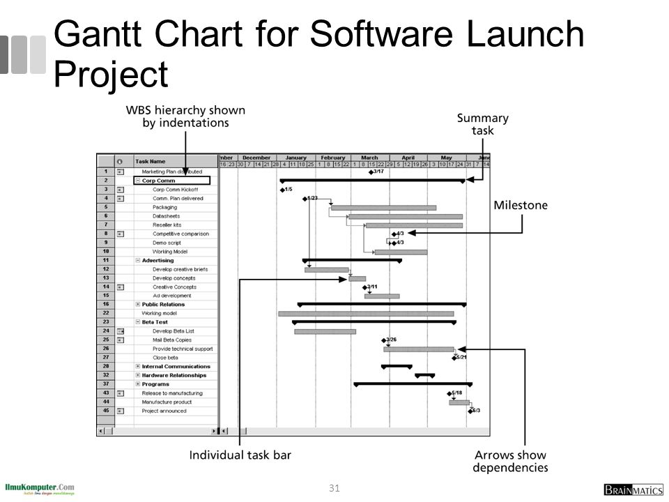 Gantt Chart for Software Launch Project