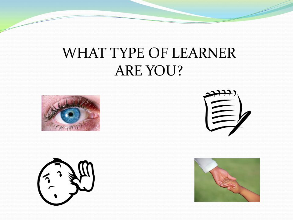 WHAT TYPE OF LEARNER ARE YOU