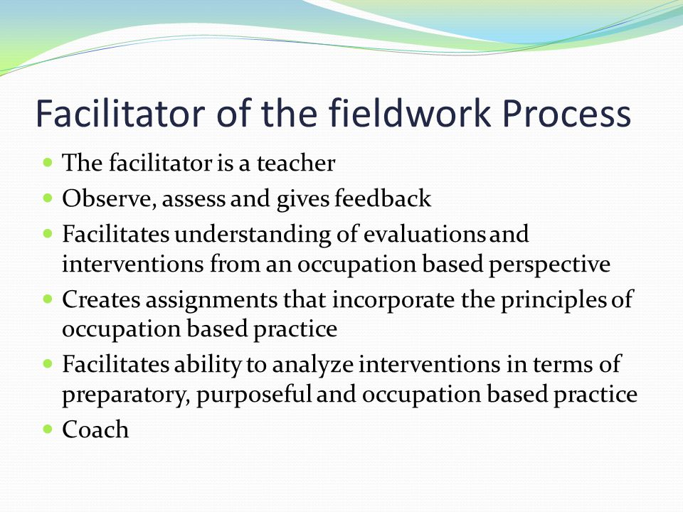 Facilitator of the fieldwork Process