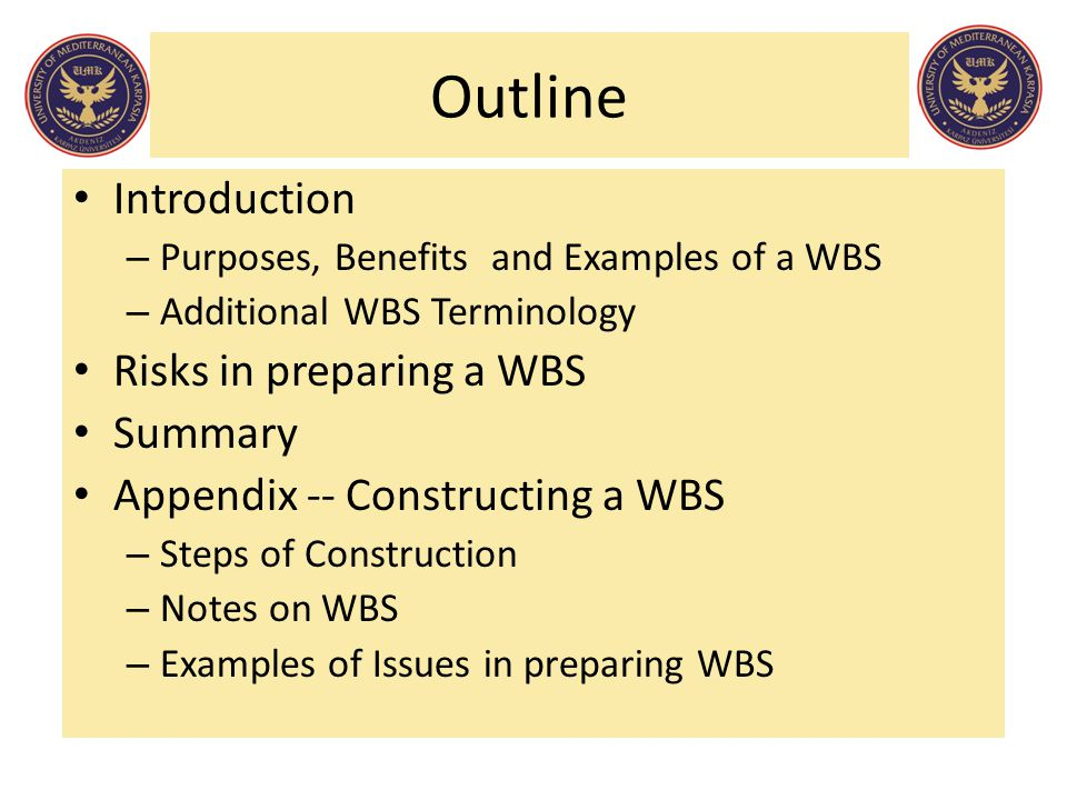 Outline Introduction Risks in preparing a WBS Summary