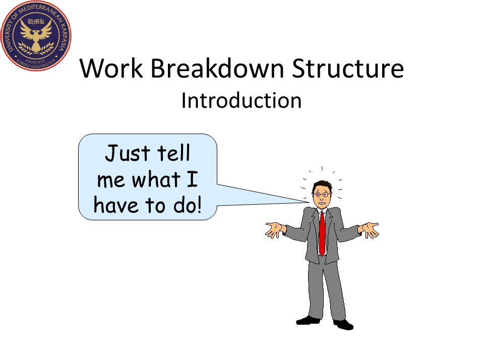 Work Breakdown Structure Introduction