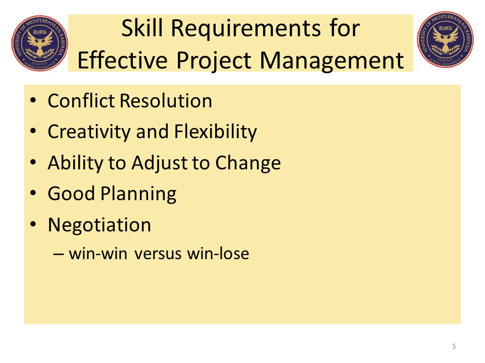 Skill Requirements for Effective Project Management