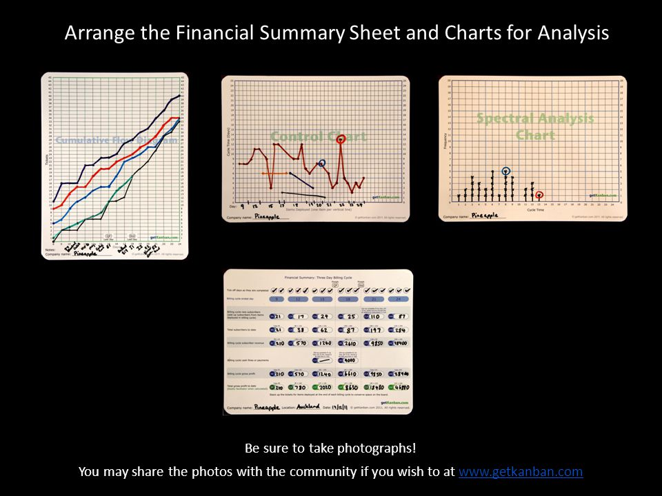 Arrange the Financial Summary Sheet and Charts for Analysis