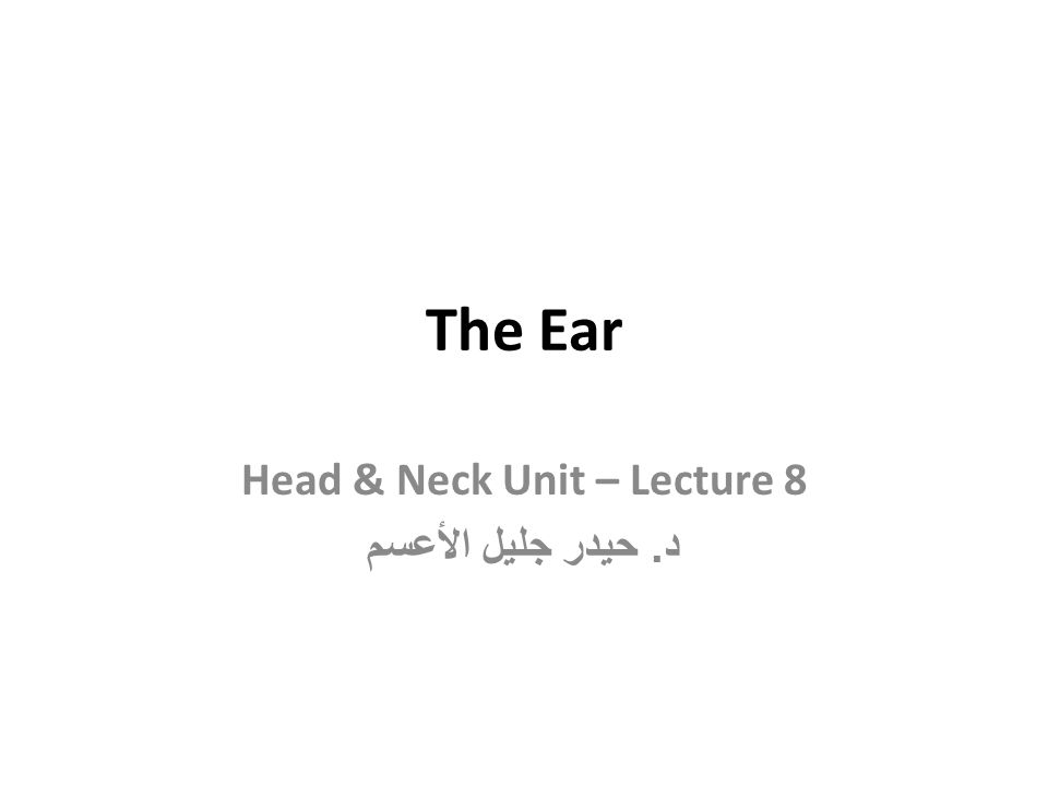 Head & Neck Unit – Lecture 8 د. حيدر جليل الأعسم