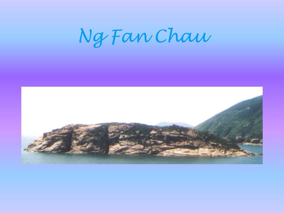 Ng Fan Chau
