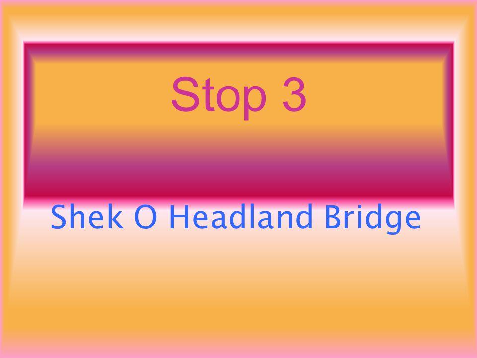 Stop 3 Shek O Headland Bridge