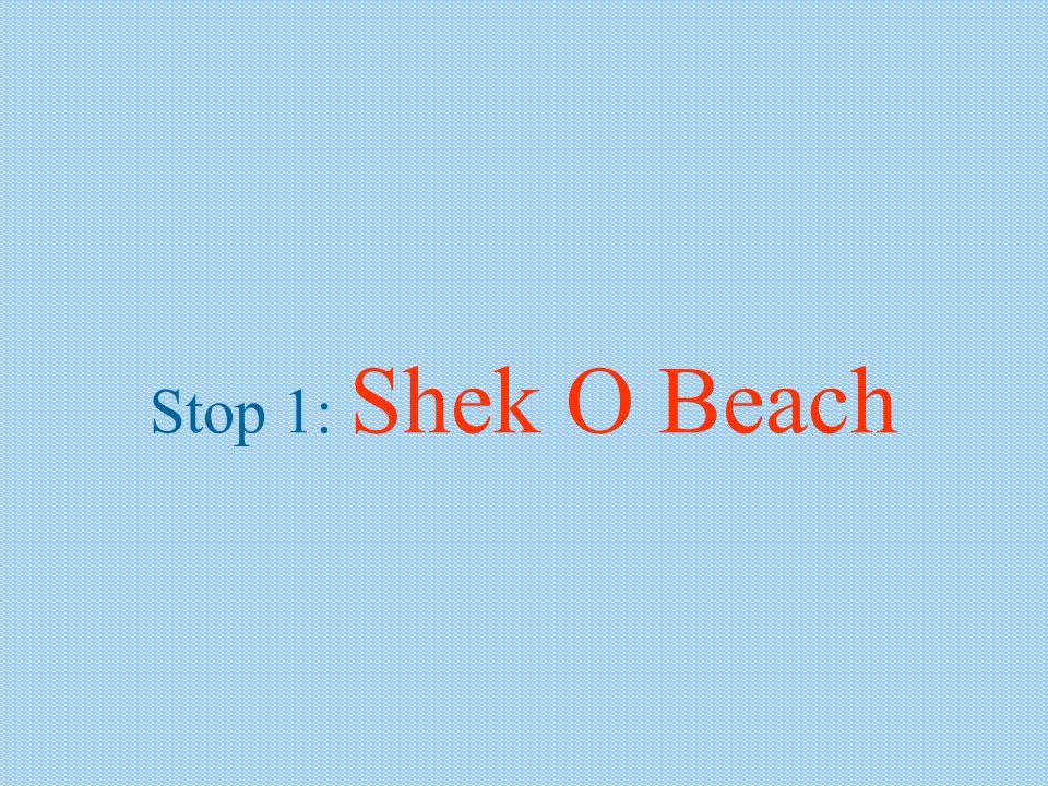 Stop 1: Shek O Beach