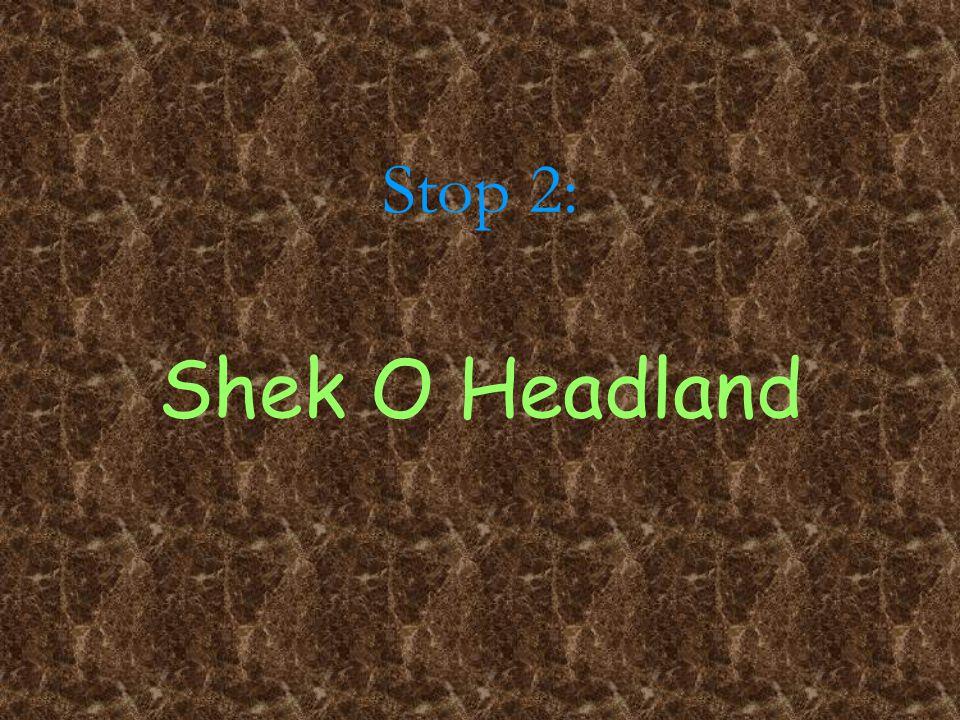 Stop 2: Shek O Headland