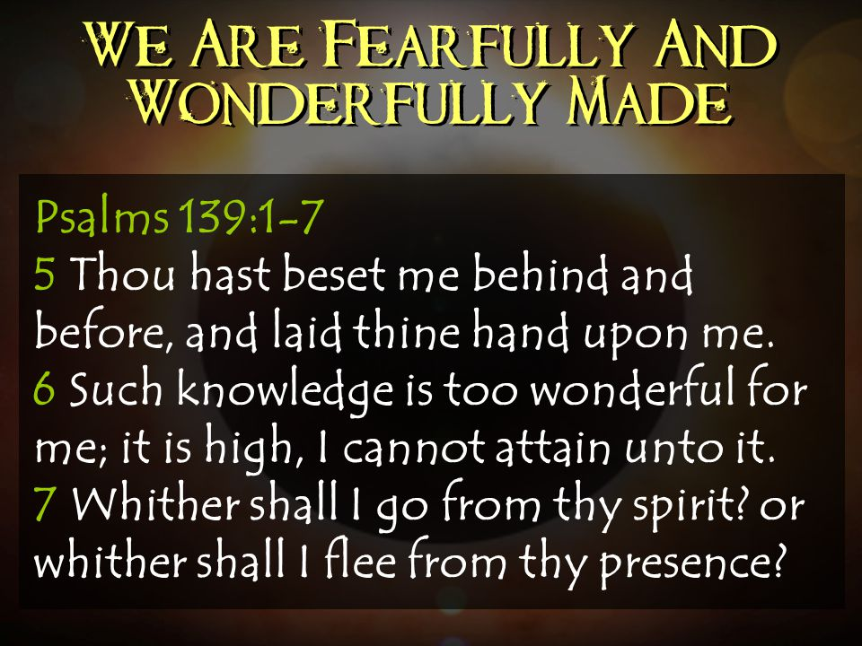 We Are Fearfully And Wonderfully Made