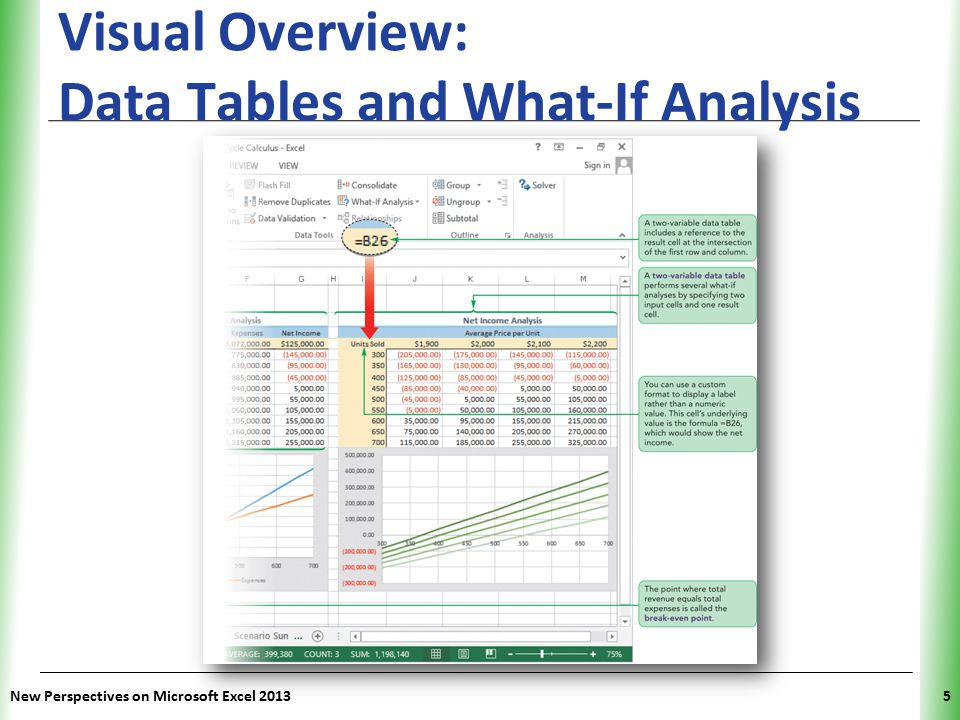 Visual Overview: Data Tables and What-If Analysis