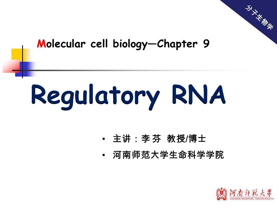 Regulatory RNA Molecular cell biology—Chapter 9 主讲:李 芬 教授/博士