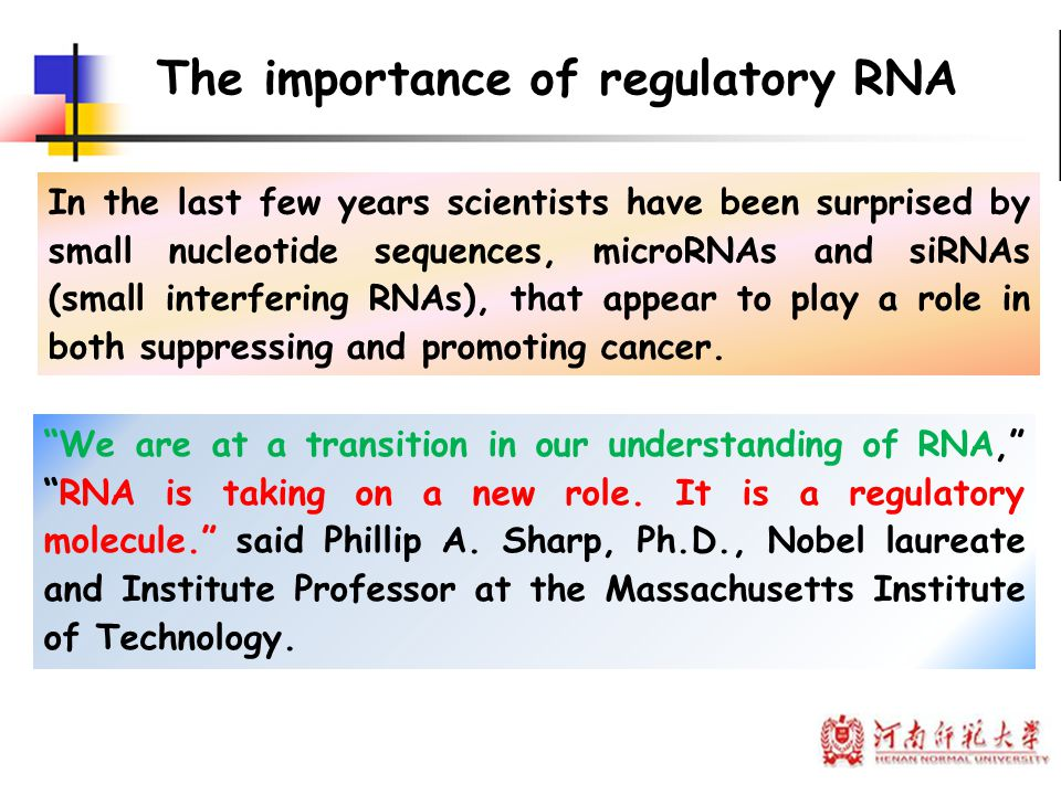 The importance of regulatory RNA