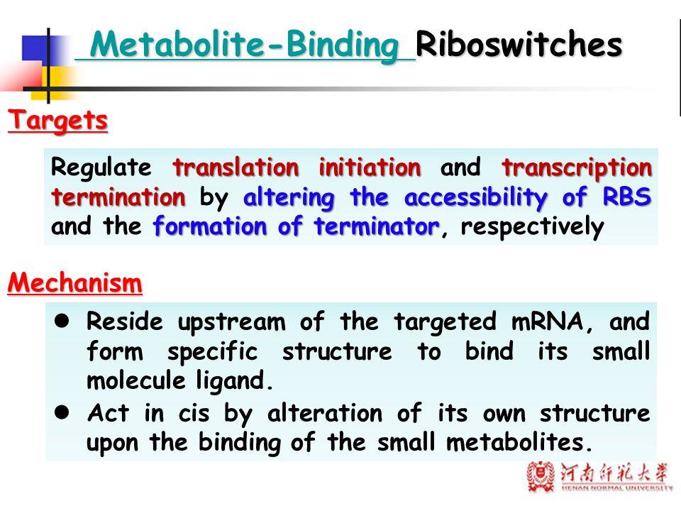 Metabolite-Binding Riboswitches