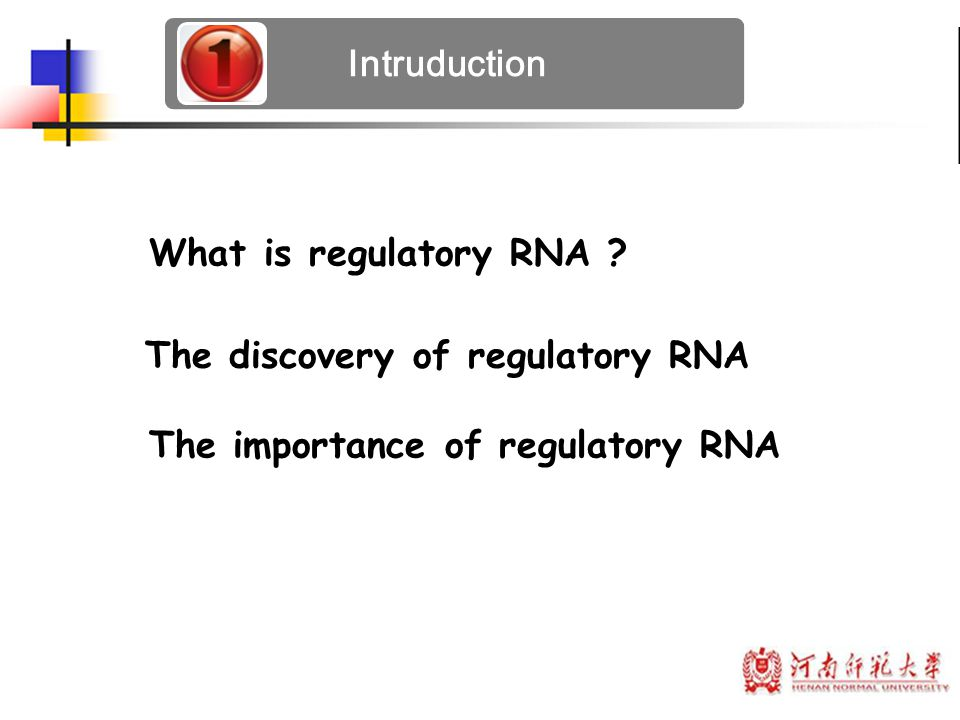 Intruduction What is regulatory RNA . The discovery of regulatory RNA.