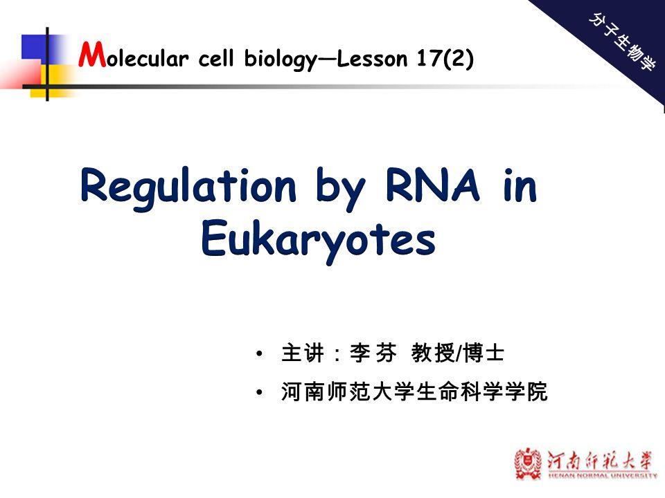 Regulation by RNA in Eukaryotes