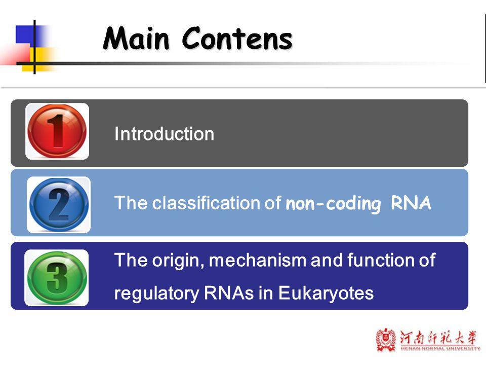 Main Contens Introduction The classification of non-coding RNA