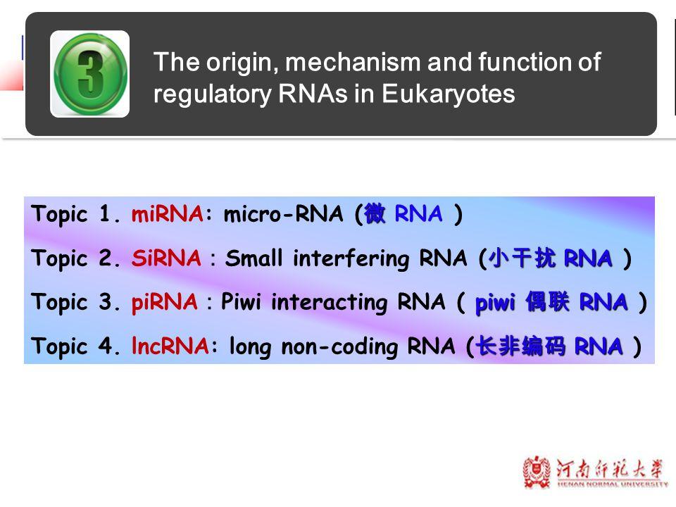 The origin, mechanism and function of regulatory RNAs in Eukaryotes