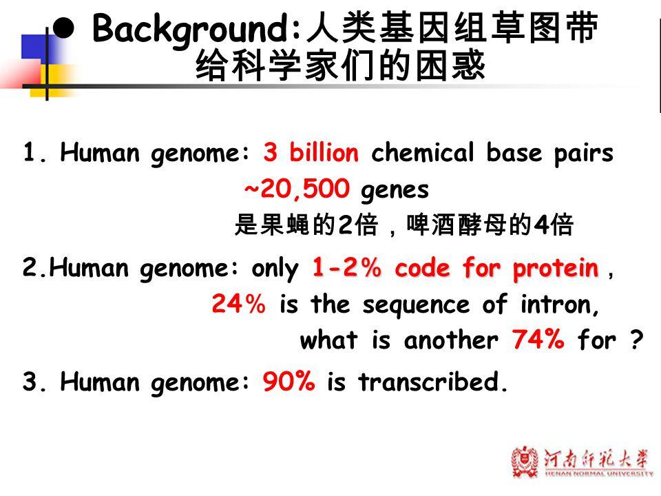 Background:人类基因组草图带 给科学家们的困惑 Background:人类基因组草图带给科 学家们的困惑