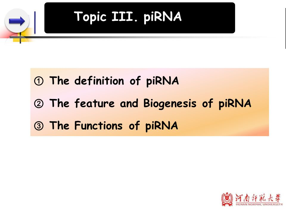 Topic III. piRNA The definition of piRNA