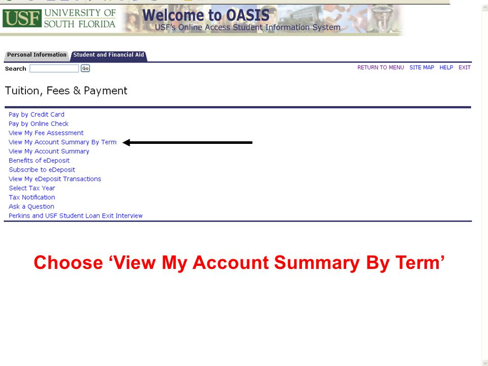 Choose 'View My Account Summary By Term'