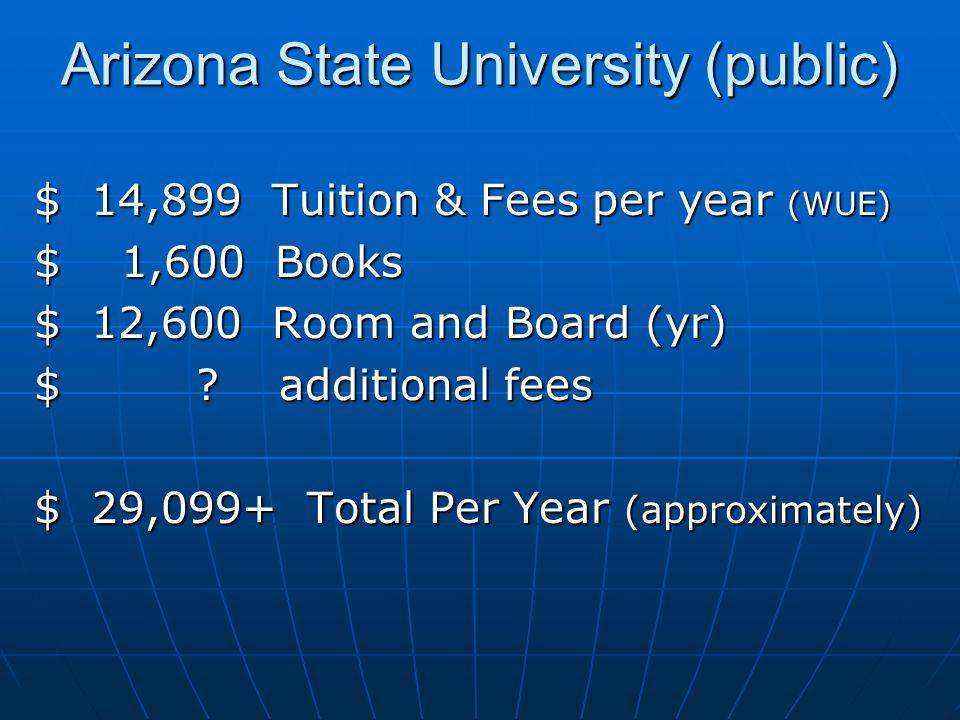 Arizona State University (public)