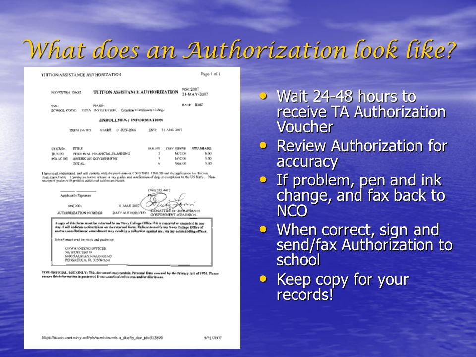 What does an Authorization look like