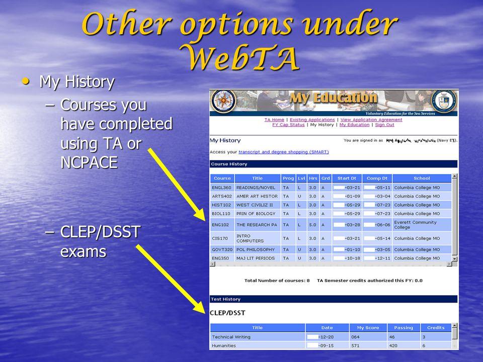 Other options under WebTA
