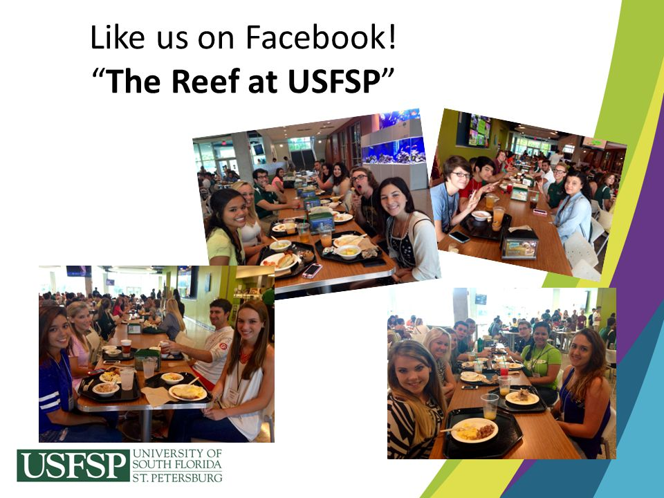 Like us on Facebook! The Reef at USFSP