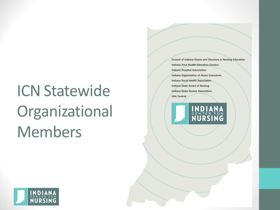 ICN Statewide Organizational Members