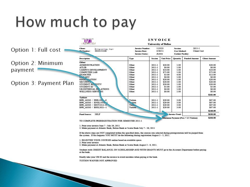 How much to pay Option 1: Full cost Option 2: Minimum payment