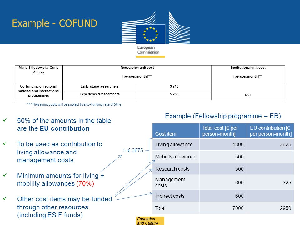 Example - COFUND Example (Fellowship programme – ER)