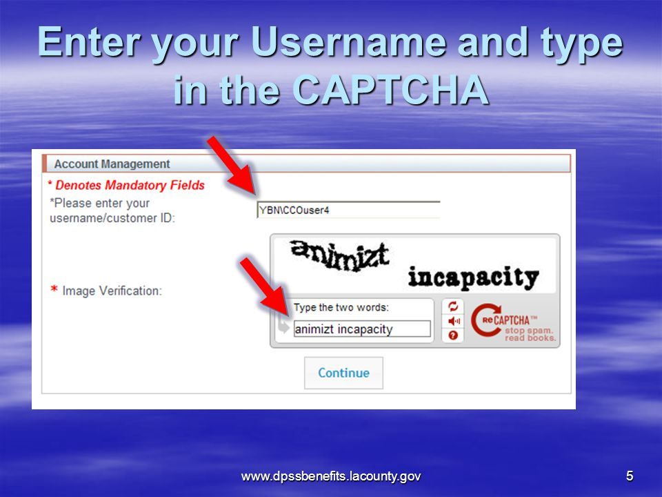 Enter your Username and type in the CAPTCHA