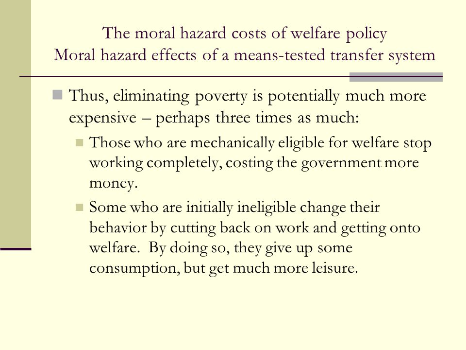 The moral hazard costs of welfare policy Moral hazard effects of a means-tested transfer system