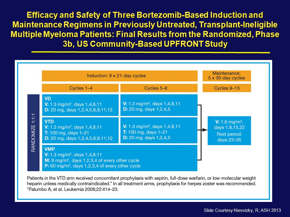Efficacy and Safety of Three Bortezomib-Based Induction and Maintenance Regimens in Previously Untreated, Transplant-Ineligible Multiple Myeloma Patients: Final Results from the Randomized, Phase 3b, US Community-Based UPFRONT Study
