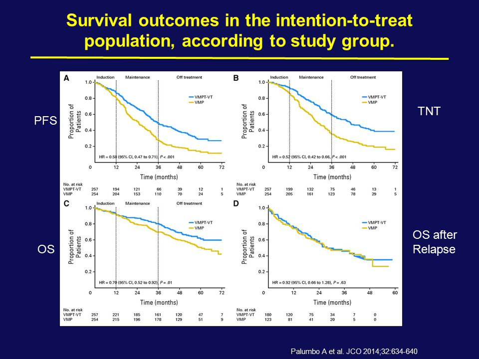 Survival outcomes in the intention-to-treat population, according to study group.