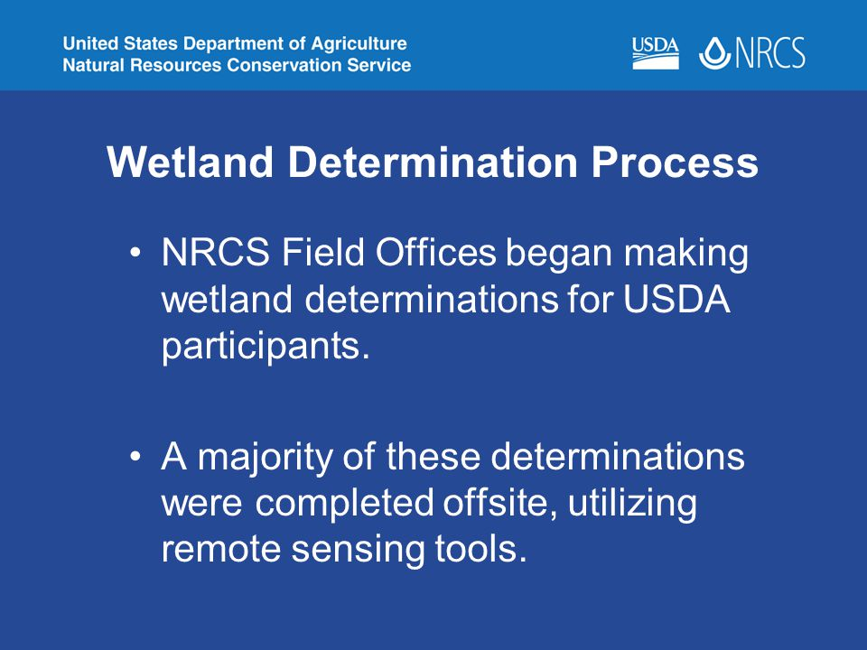 Wetland Determination Process